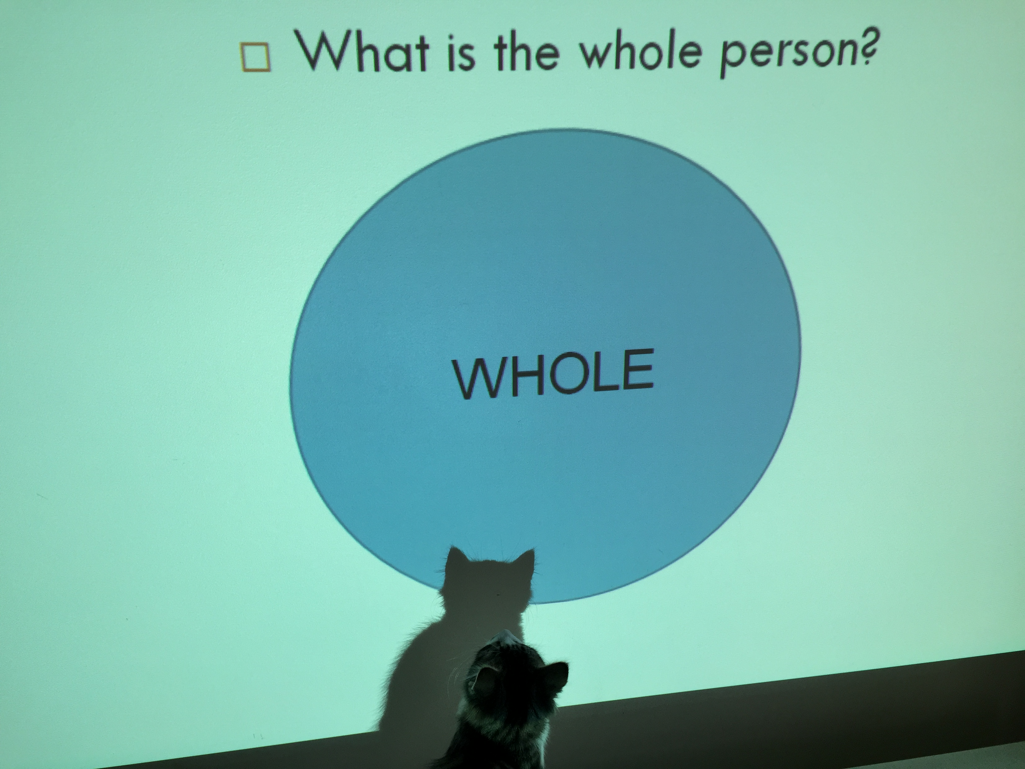 What is the whole?